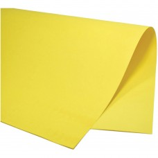 Color Set Plus Amarelo CS050.03 48x66cm 20 fls