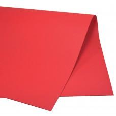 Color Set Plus Vermelho CS050.05 48x66cm 20 fls